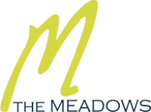 The Meadows - Shopping Center